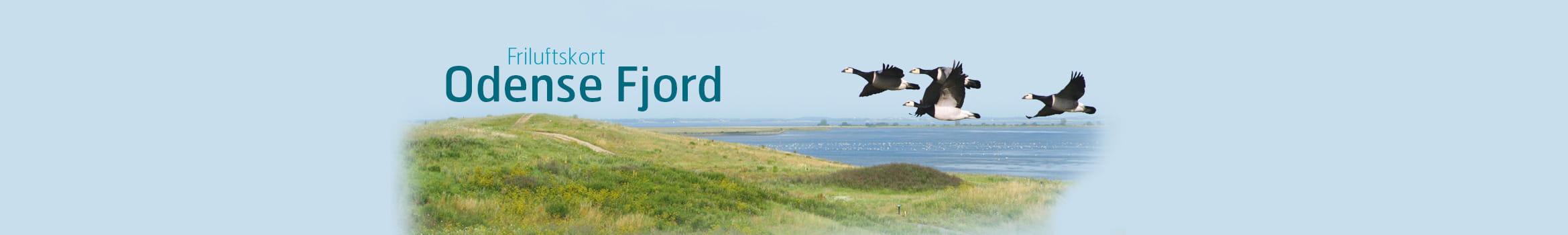 OdenseFjord banner